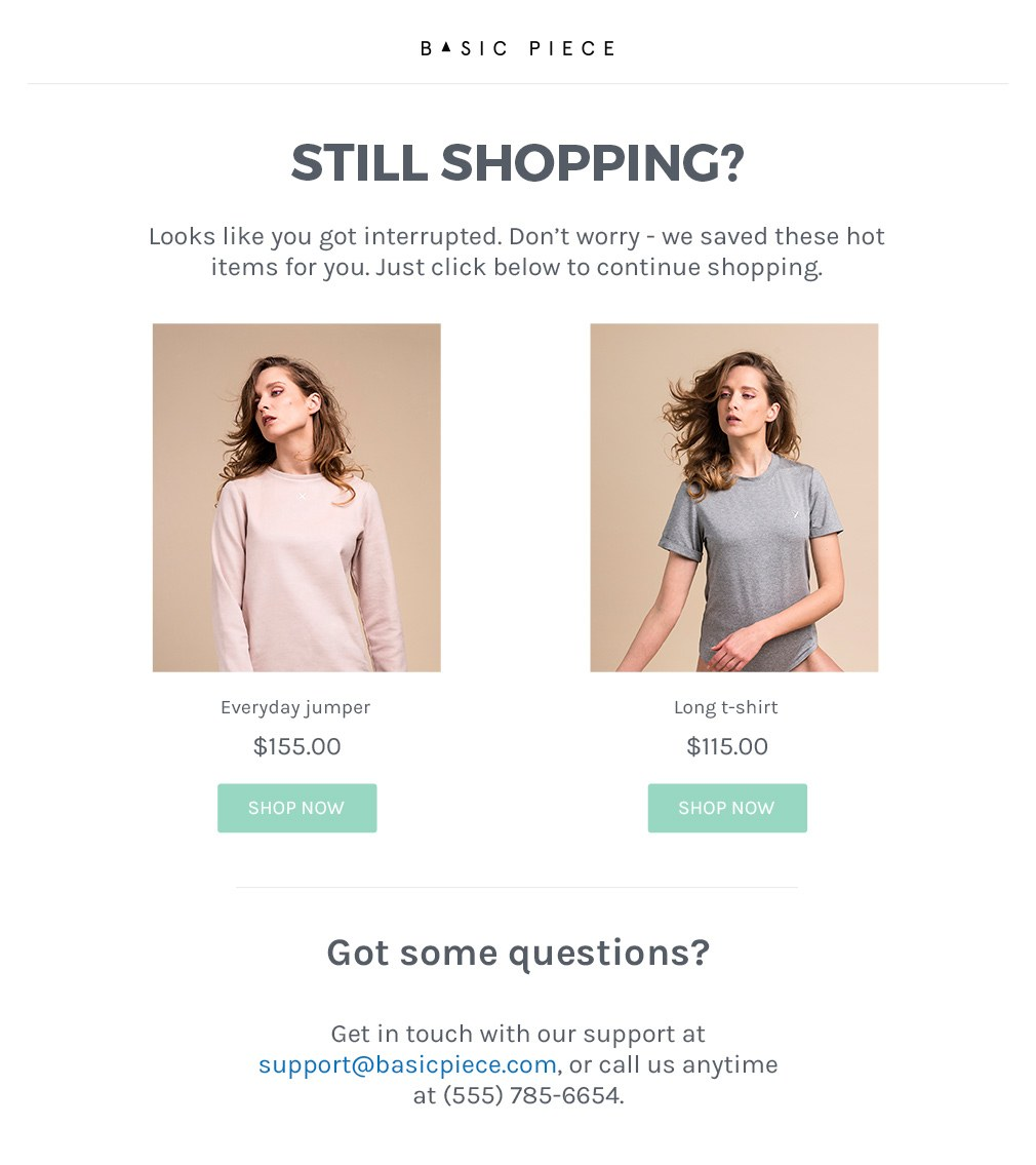 The cart recovery email template  - an example email