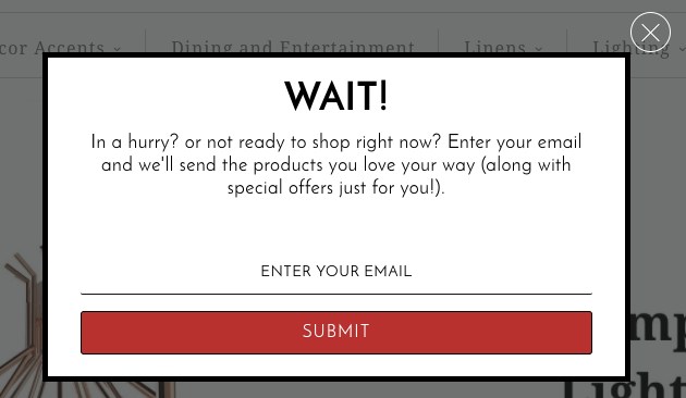 exit-popup-examples17