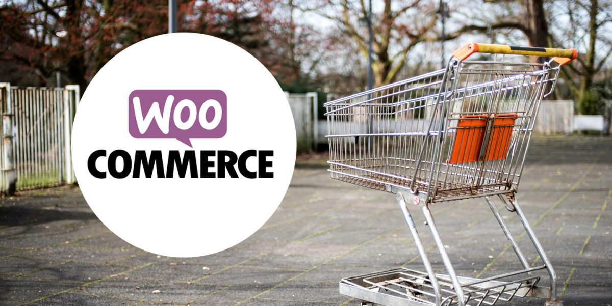 WooCommerce Abandoned Cart: 7 Plugins to Help You Recover Lost Sales
