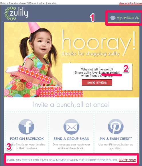 Zulily follow up email